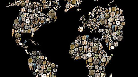 Mosaik einer Weltkarte aus diversen menschlichen Zähnen und Zahnüberresten