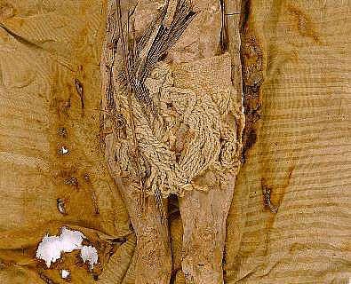 """Die """"Schöne von Xiaohe"""" ist eine etwa 4000 Jahre alte Mumie"""
