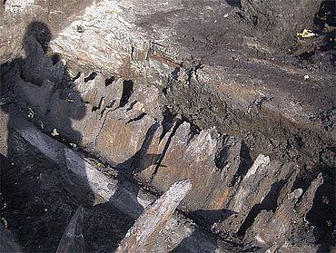 Innen ausgehöhlte Eichenhölzer des Wallabschlusses (Foto: Stadtarchäologie Stade)