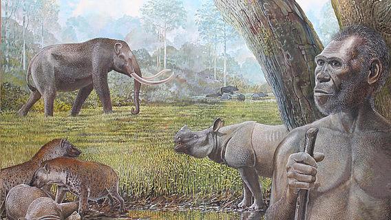 Pleistozäne Savanne in Südostasien