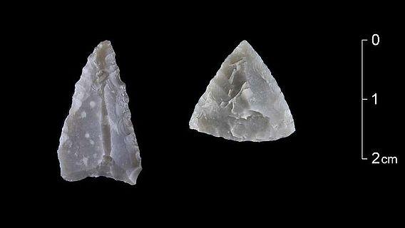 Zwei Pfeilspitzen, die typisch für die mittlere Phase der Jungsteinzeit vor etwa 6500 Jahren sind. Der Feuerstein für das linke Stück stammt aus Belgien. (Foto: LWL/H. Menne)