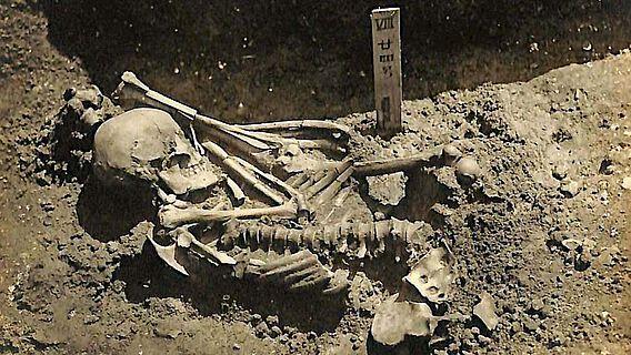 Die Überreste von Tsukumo Nr. 24
