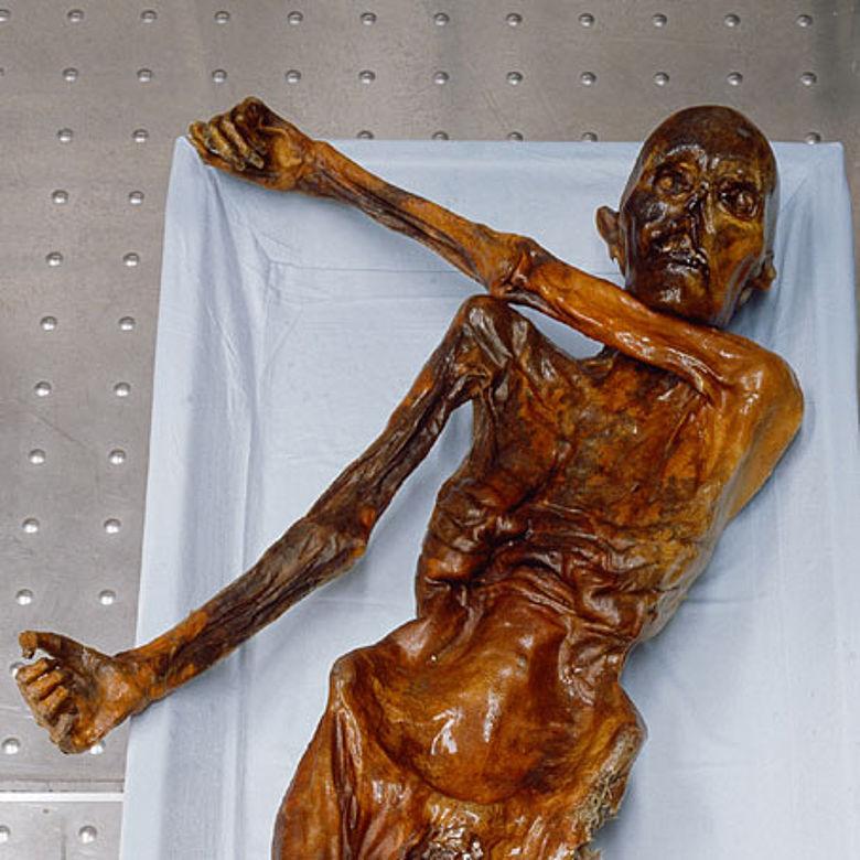 Der Mann aus dem Eis in seiner Kühlkammer im Südtiroler Archäologiemuseum Bozen. © Südtiroler Archäologiemuseum