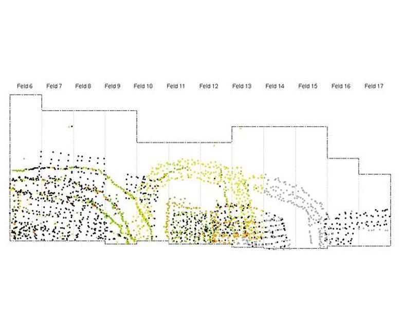 Ausschnitt des Pfahlplanes (Bild zvg. Archäologischer Dienst des Kantons Bern)