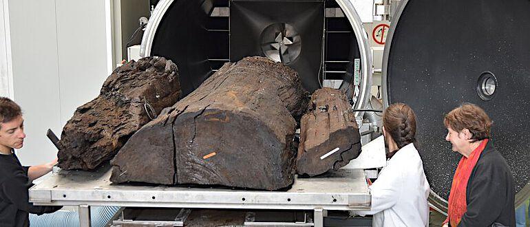 Trocknungsprozeß eines Holzartefaktes