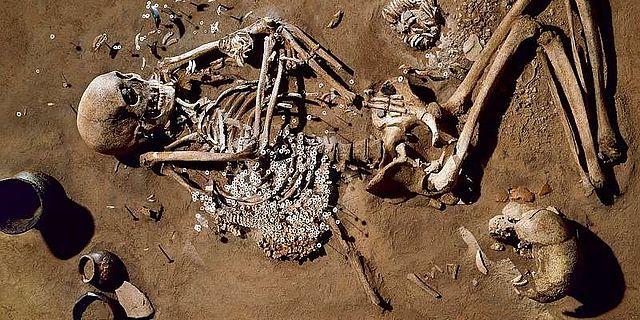 Bestattung eines erwachsenen Mannes neben Dutzenden Flußmuscheln, Salzmünde, Saalekreis