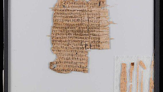 Der untersuchte Papyrus