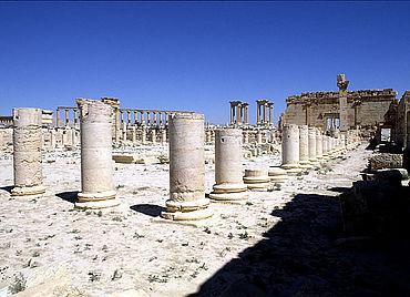 Palmyra: Agora