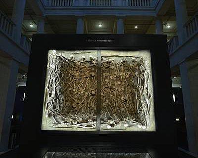 Massengrab in Ausstellung