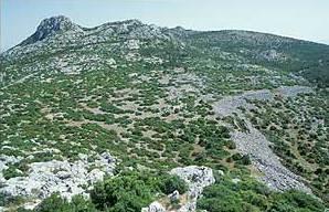 Übersichtsaufnahme der Ruinen des antiken Melia auf ca. 750 Metern Höhe. (Foto: Inst. Arch. Wiss. RUB)