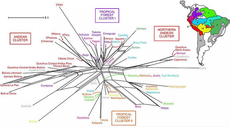 Grafik: Beziehung zwischen Panflötenmerkmalen