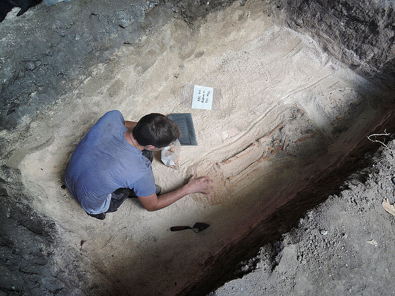 Freilegung eines Skeletts auf Guam