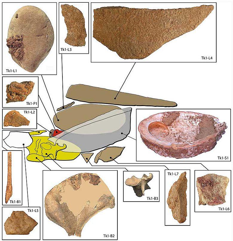 Die Einzelteile des »vollständigen Werkzeugkastens« bestehend aus dem Gehäuse einer Abalone-Schnecke. L1: Kieselstein, L2-7: Quarzitabschläge, B1: Knochenspatel, B2: Schulterbaltt einer Robbe, B3: Wirbelknochen, P1: Pigmenentstücken, S1: Gehäuse der Abalone-Schnecke © d'Errico/Pedersen/Henshilwood