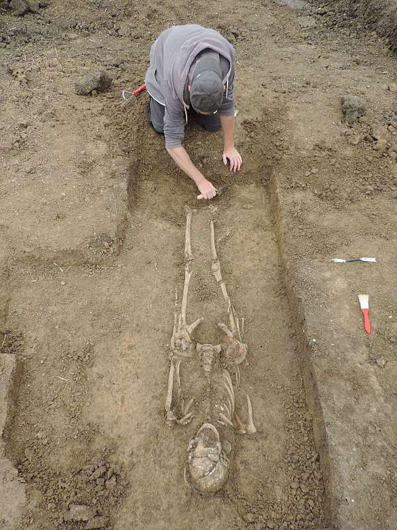 Freilegung frühmittelalterliches Frauengrab