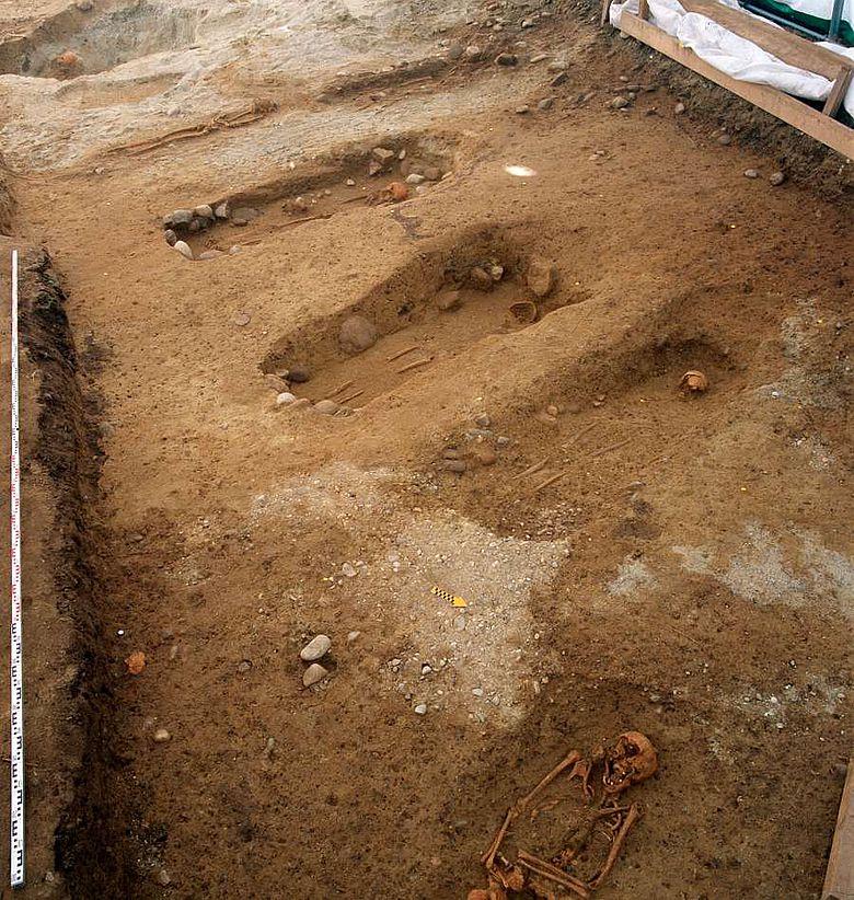 Gut zu erkennen sind die in Reihen angeordneten Grabgruben mit mehr oder weniger gut erhaltenen Bestattungen. (Foto: Kanton BE)