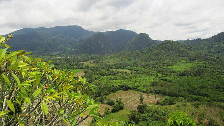 Das Tiefland der philippinischen Insel Palawan - Südostasien