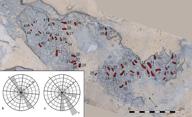 Fotogrammetrische Aufnahme mit Markierung der Fußabdrücke