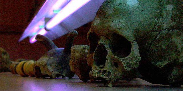 Prähistorische Funde werden UV-bestrahlt