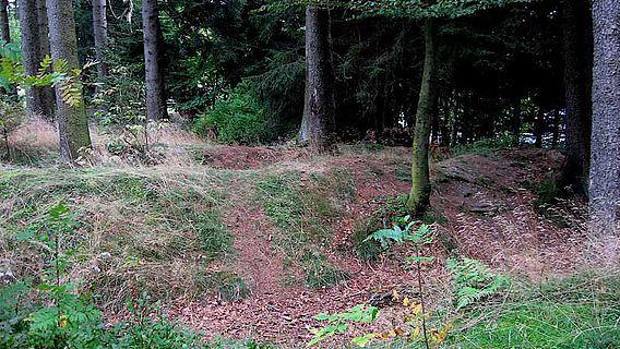 Auf dem Langescheidt bei Schmallenberg ist die Wehranlage mit zwei Wällen noch deutlich zu sehen