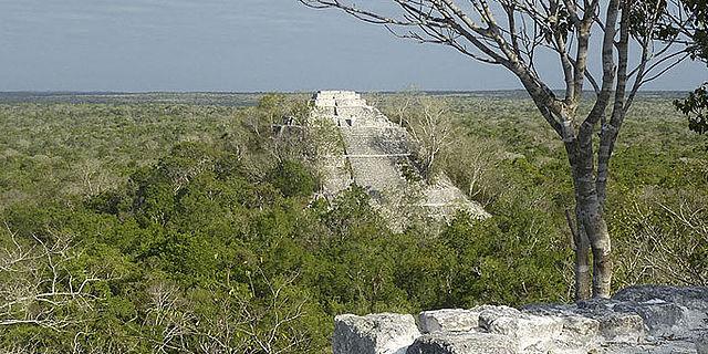 Eine Maya-Stadt im Regenwald wird von deutsch-mexikanischem Team auferweckt