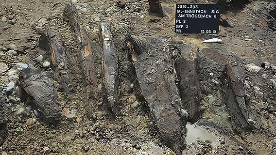 Römische Fischreuse