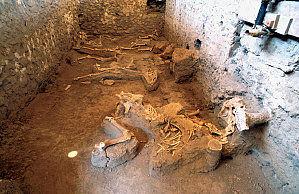 Ausgrabung im Pompei