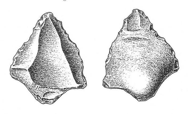 Abb. 6| Moustérien-Spitze der Ramesch-Knochenhöhle, Totes Gebirge OÖ, Länge: 6,5 cm (aus G. Rabeder 1985)