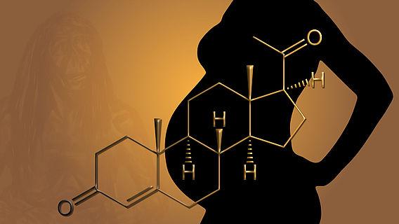 Neandertaler-Progesteron