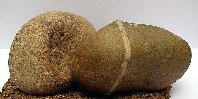 Fundsache Homo erectus