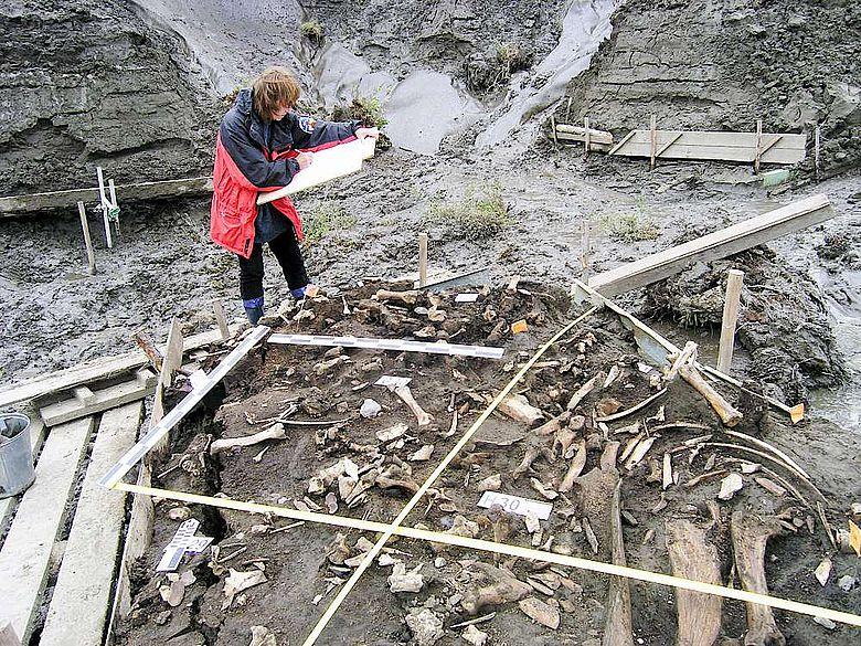 Die archäologische Stätte in der Nähe des Jana-Flusses