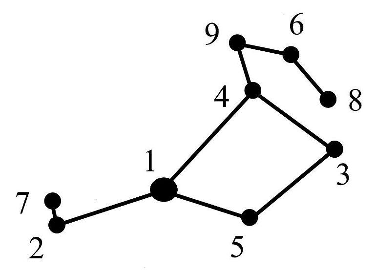 Abb. 10| Die Plejaden, geordnet nach ihrer Größenklasse - 1 Alkyone (2,9); 2 Atlas (3,6); 3 Elektra (3,7); 4 Maya (3,9); 5 Merope (4,1); 6Taygeta (4,3); 7 Pleione (4,8-5,5 fluktuiert); 8 Celaeno (5,5); 9 Asterope (5,8) Zeichnung: Kurzmann