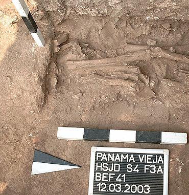 Knochendepot in der Baugrube der Westwand des Spitals. (Foto: C. Knipper)