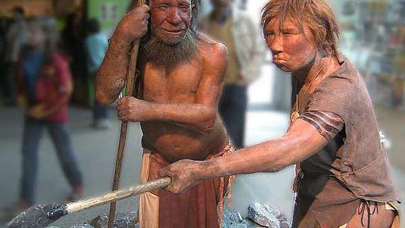 Wieviel Neandertaler steckt in uns und wieso eigentlich nur so wenig? (Foto: UNiesert; CC BY-SA 3.0)
