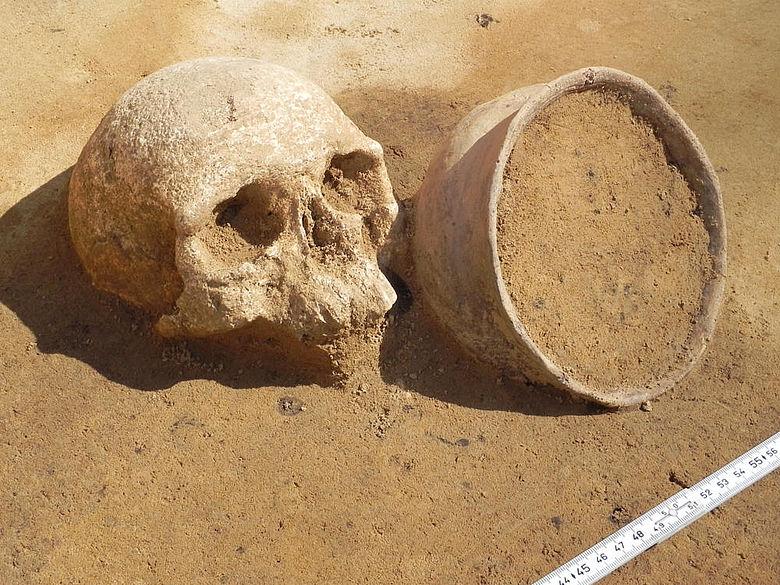 Bronzezeitlicher Schädel mit Beigefäß