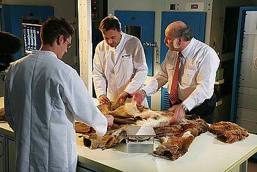 Das Team von Prof. Dr. Karl-Heinz Umbach (rechts) verglich moderne Funktionstextilien hinsichtlich des Tragekomforts mit Nachbauten der Ausrüstungsgegenstände, die bei der Gletschermumie Ötzi gefunden worden waren. (Foto: Hohensteiner Institute)