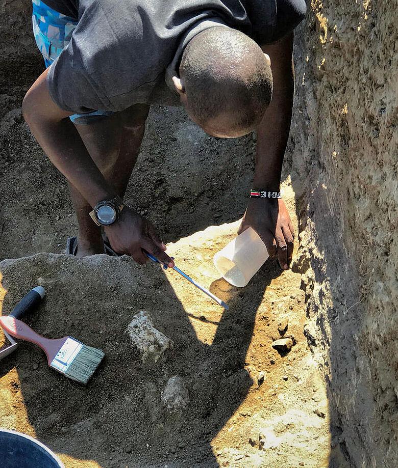 Ausgrabung Fossilien