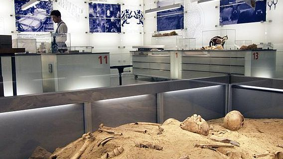 """Blick in das Forscherlabor mit dem """"Tatort"""", einem Grab früher Bauern in Westfalen, im Vordergrund (Foto: LWL/Brentführer)"""
