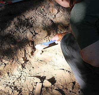 Grabung auf dem Kapellenberg