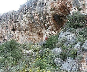 Eingang zur Misliya-Höhle, Karmelgebirge, Israel
