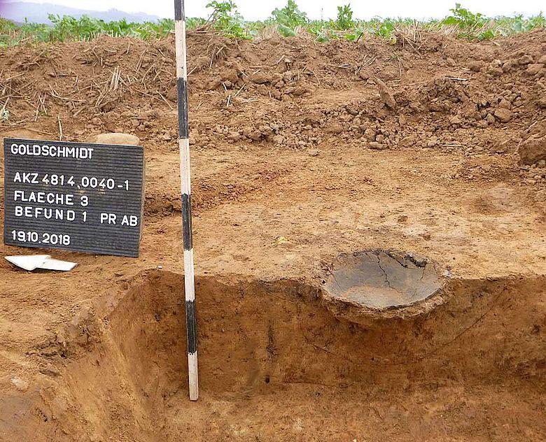 Im Profil zeigt sich der bescheidene Überrest der Urne sehr deutlich