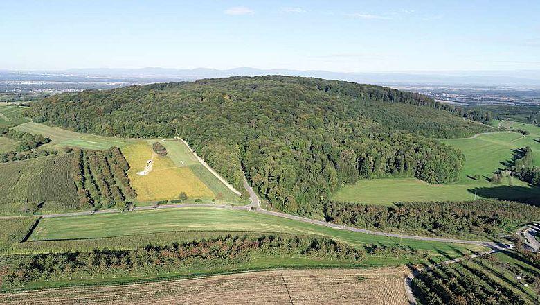 Luftbild mit Blick auf die aktuelle Ausgrabung am Steinacker