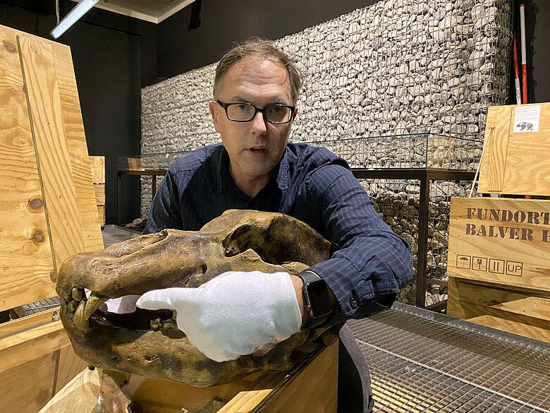 Digitale Führung im LWL Museum für Archäologie