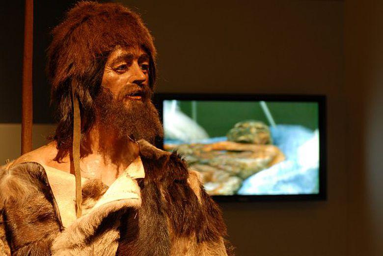 Rekonstruktion des Ötzi im Museum in Bozen (Foto: Südtiroler Archäologiemuseum / A. Kaiser)