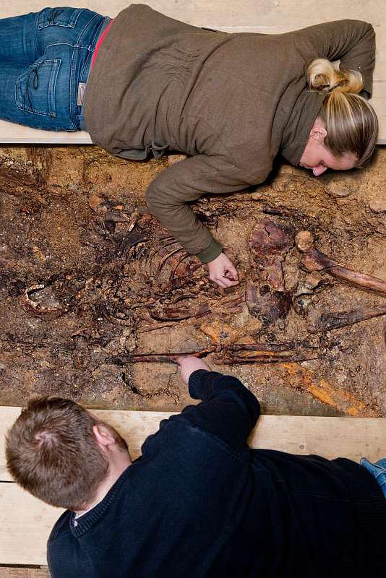Freilegung eines im Block geborgenen Grabes