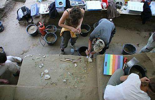 Ausgrabungsarbeiten in Willendorf II