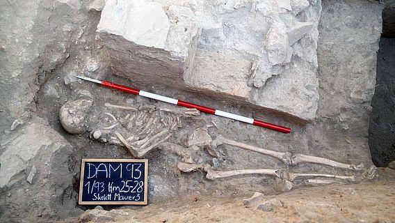 Skelett in der Gladiatoren-Grabanlage
