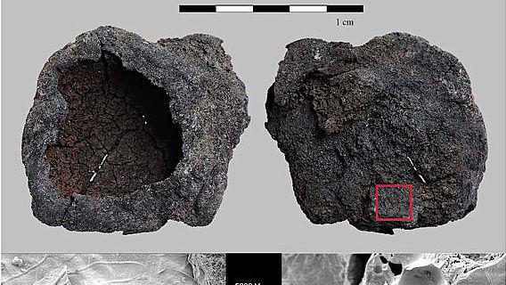 Ein schalenförmiges verkohltes Getreideprodukt von Hornstaad-Hörnle