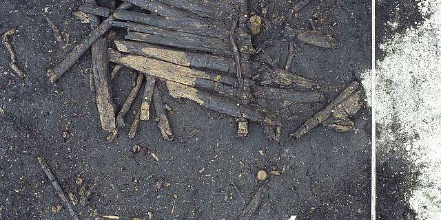 Reste eines rund 6000 Jahre alten Bohlenweges, der ursprünglich in das Dorf am Moossee führte. (Archäologischer Dienst Kanton Bern)