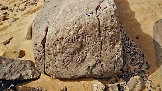 Die Felsinschrift mit den vier Hieroglyphen: Domäne des Horus-Königs Skorpion