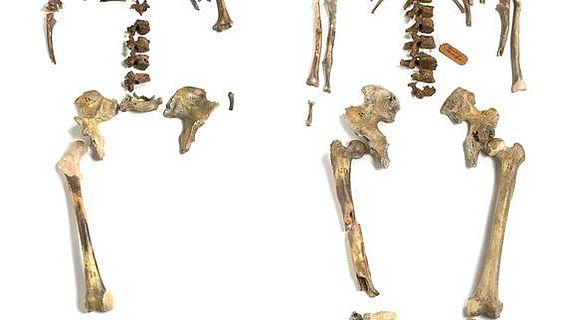 Älteste anatomisch moderne Menschen